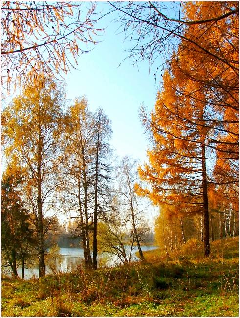 Вифанская осень