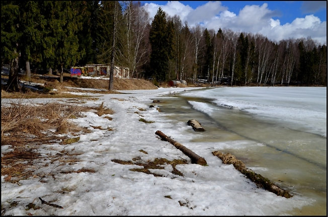 Лесное озеро в апреле