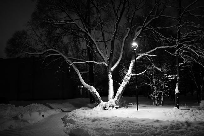 Ночь-бессоница