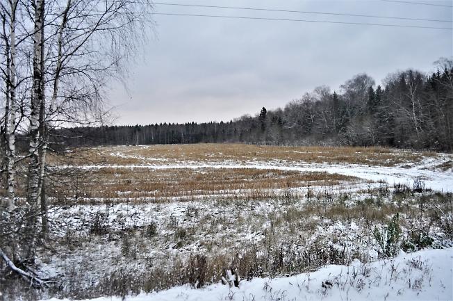 Зима нагрянула