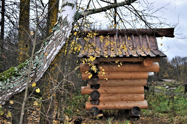 Музей курной избы , с. Воздвиженское