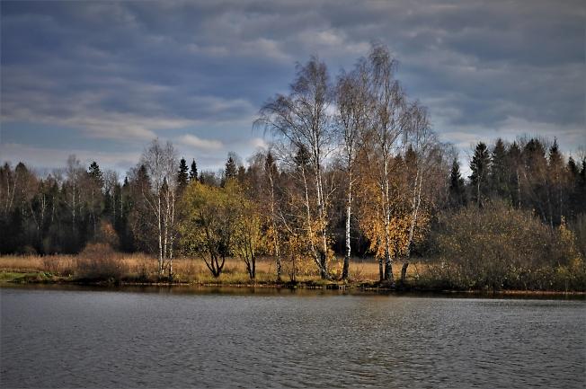 Позолоченная осень