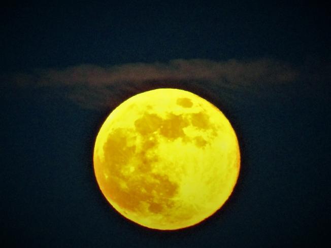 Луна, одета в ткани золотые...