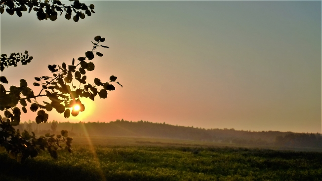 Рассвет с росами