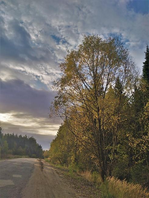 По утренней дороге