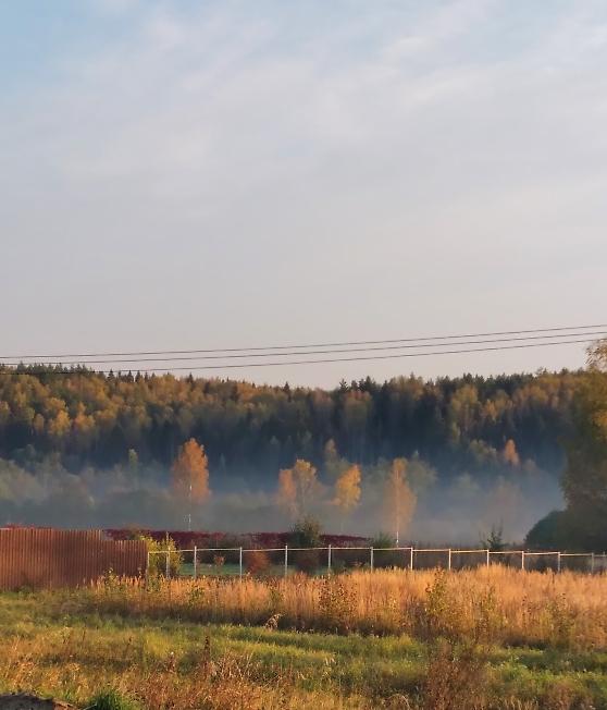 За деревней туман