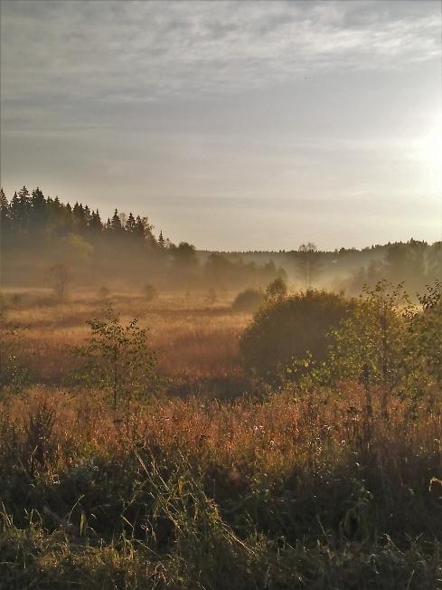 В долине стелется туман