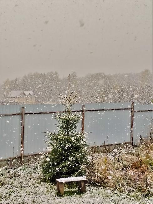 ...И отдаленные седой зимы угрозы...