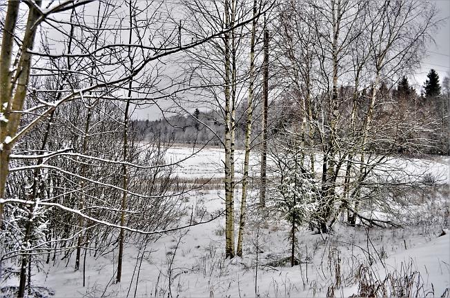 Зима снежком укутала