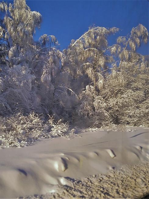 Очаровательная зима