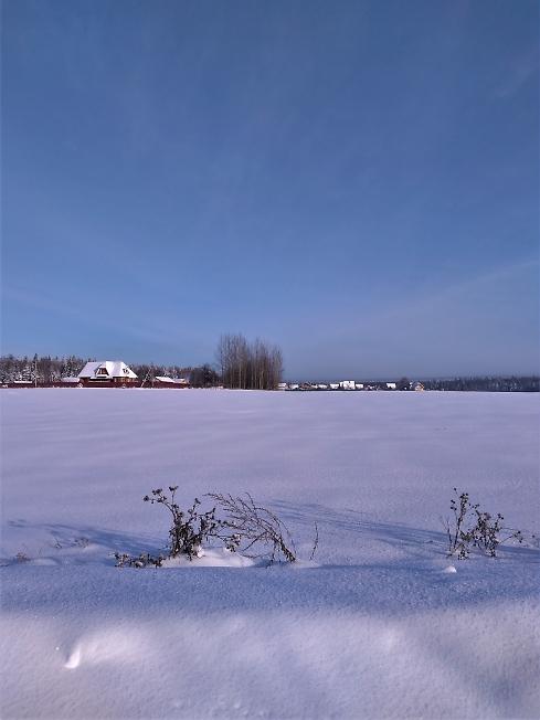 Снег да снег кругом...