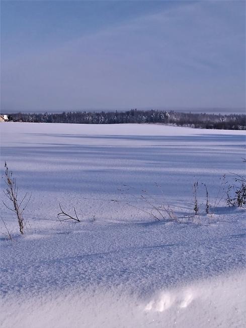 Снежная даль