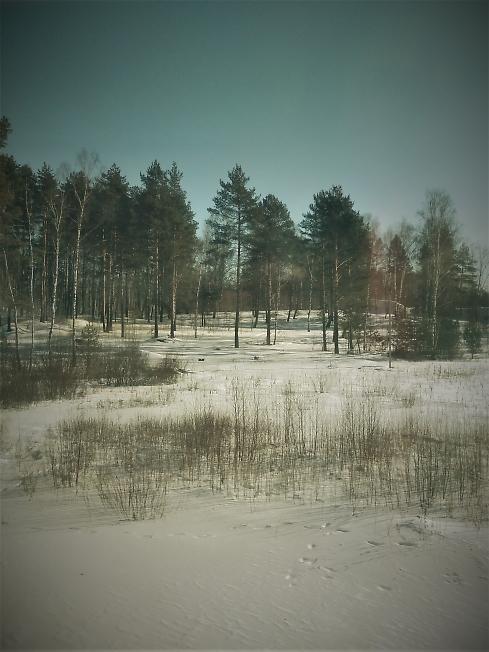Милые пейзажи вдоль Ярославской ж.д. (2)