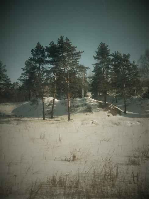Милые пейзажи вдоль Ярославской ж.д.