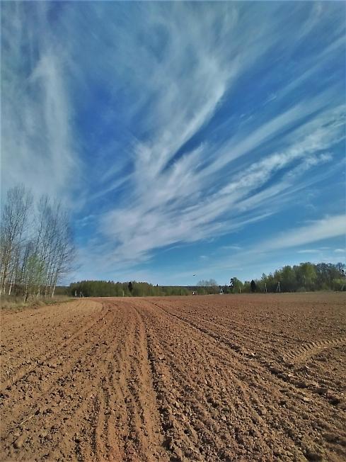 Летящие облака
