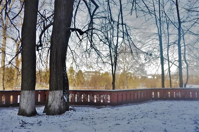 Снежная завеса