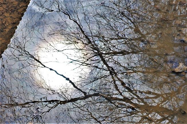 Солнышко!   Весеннее отражение.