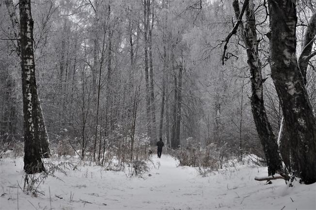 Зимняя сказка в 2021году (2)
