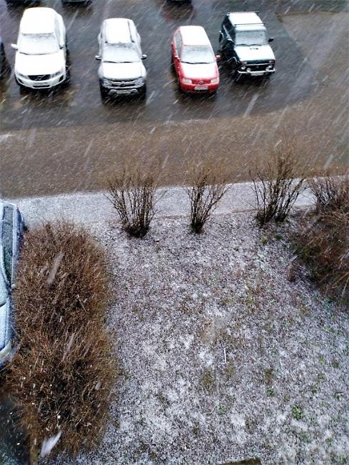 Снег посыпал!