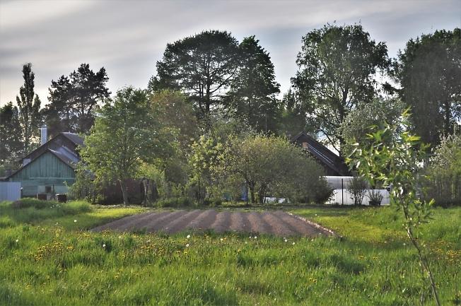 Аккуратный огород