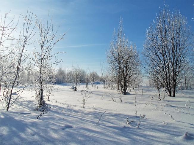 Под голубыми небесами великолепными коврами, блестя на солнце, снег лежит...