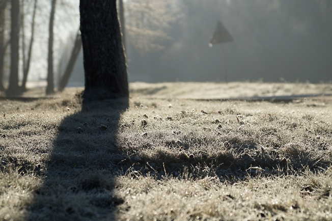 Мороз и солнце, день рабочий...