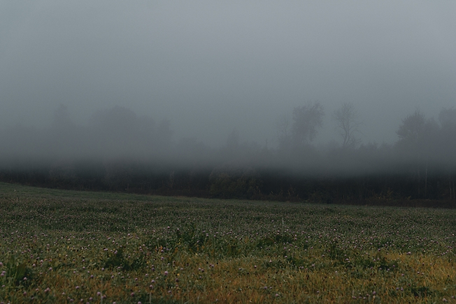 Рассветный туман