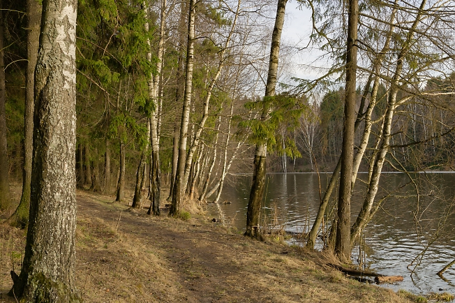 Тропинками вдоль озера