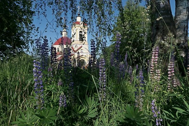 В деревне Слотино