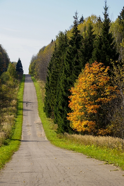 Осенняя дорога 2