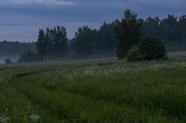 Туман зарождается