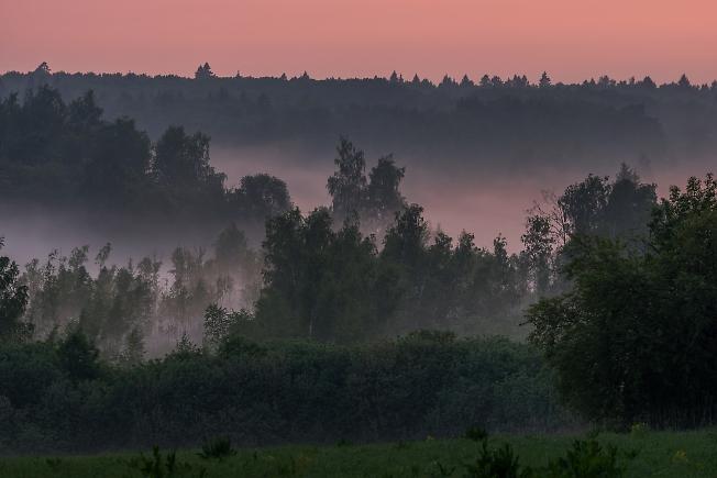 Подмосковный туман