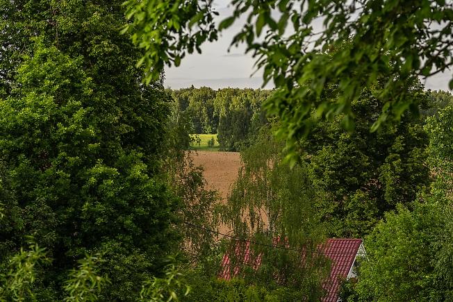 Пейзаж в деревне