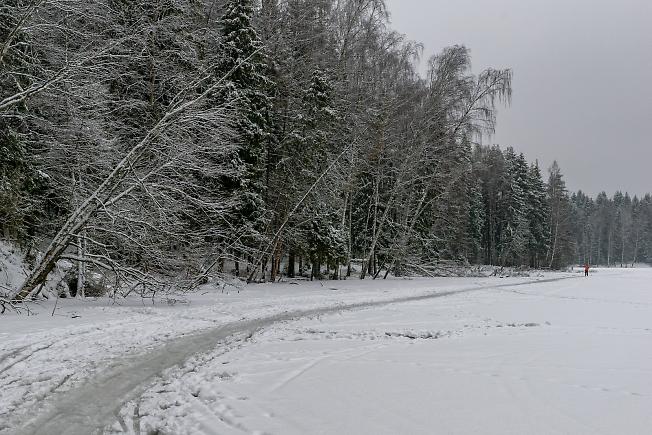 НА Лесном озере )