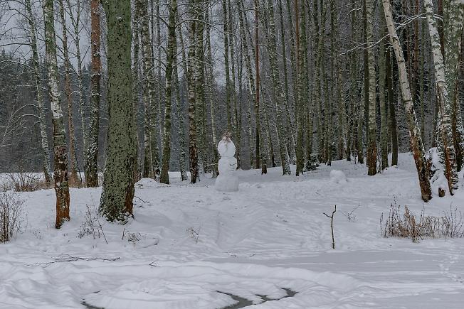 Одинокий снеговик в лесу