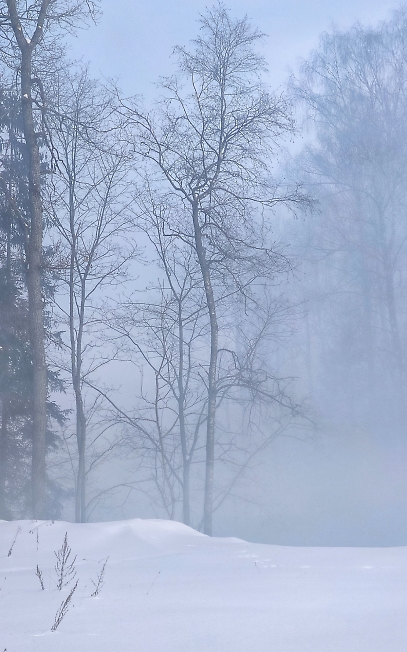 Зима туманная