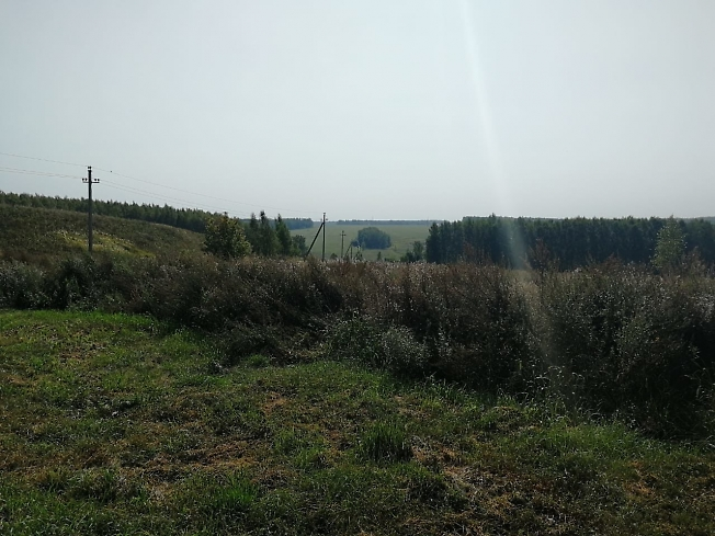 150 км Волгоградки, подъезжаем к моей даче,,,,,,,,,..........