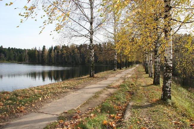 Озеро Лесное.