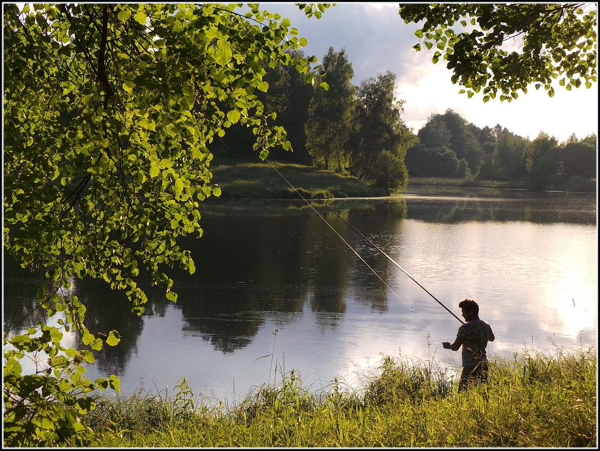 Рыбалка на пруду картинки