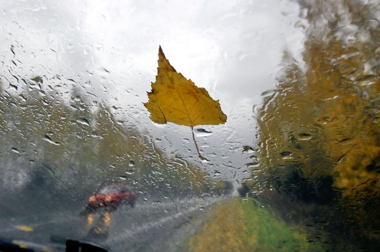 Картинки про сырую погоду