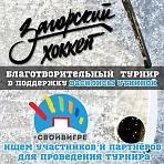 Благотворительный турнир по хоккею в поддержку Василисы Уткиной
