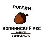 """Рогейн """"Копнинский лес"""""""