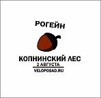 """Рогейн и тур.лагерь """"Копнинский лес"""" от клуба ВелоПосад. Солнечный ФесТ в Семхозском лесу!"""