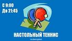 """Настольный теннис в зале спортивного комплекса """"Сергиев Посад"""" по выходным!"""
