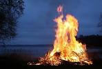 В пожарные части Сергиево-Посадского района начали поступать сообщения о поджогах травы