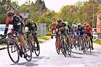 Велосипедисты из Подмосковья едут в Нидерланды на чемпионат и первенство Европы