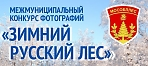 Межмуниципальный фотоконкурс «Зимний русский лес»