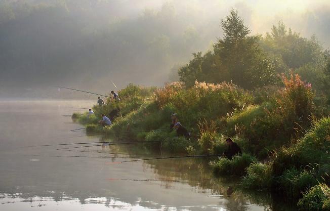 Утро. Рыбалка.