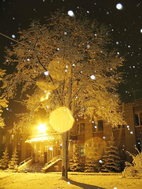 Снег за окном идет это новый год