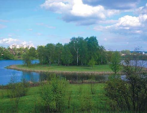 Вифанский пруд